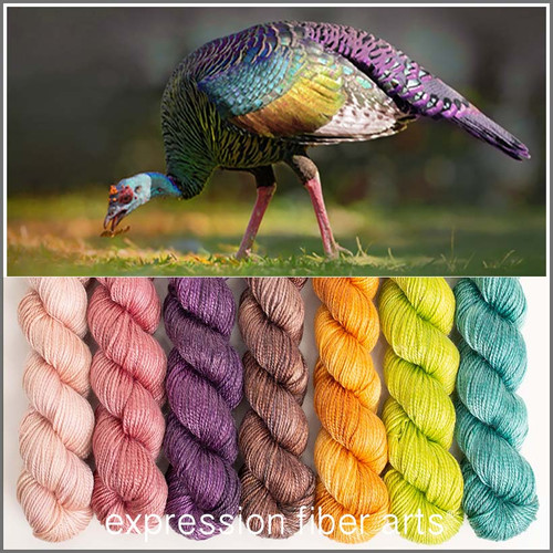 Pre-Order OCELLATED TURKEY HUES 'LUSTER' SPORT MINI KIT