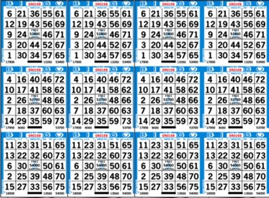 Bingo Paper 12 H (750 Single Sheets)