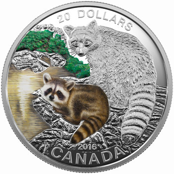 2016 $20 FINE SILVER COIN - BABY ANIMALS: RACCOON