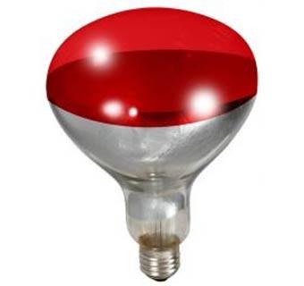 250 Watt Red Bulb For Heat Lamps