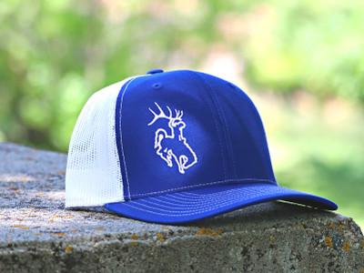 Bucking Horse Edge - Blue and White