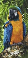 Toalha de Praia - Pássaro Tropical / Beach Towel - 76cm x 1,52m