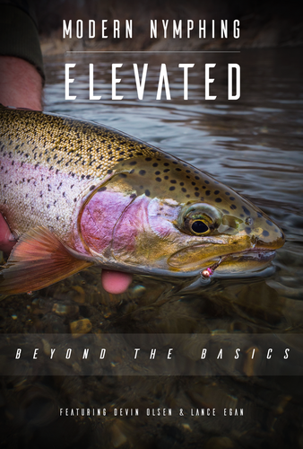 Modern Nymphing Elevated: Beyond the Basics DVD