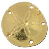 Sanddollar Lapel Pin