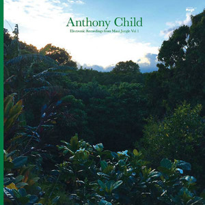 ANTHONY CHILD Electronic Recordings from Maui Jungle Vol. 1 2LP