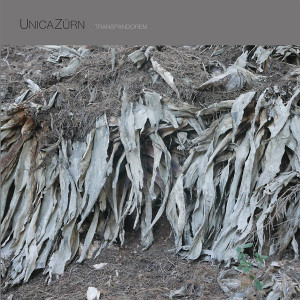 UNICAZURN: Transpandorem LP