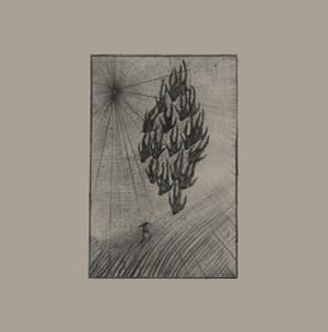 AINE O'DWYER: Locusts LP