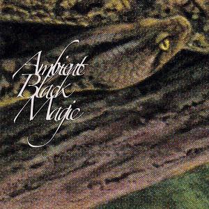 RAINFOREST SPIRITUAL ENSLAVEMENT: Ambient Black Magic 2CD