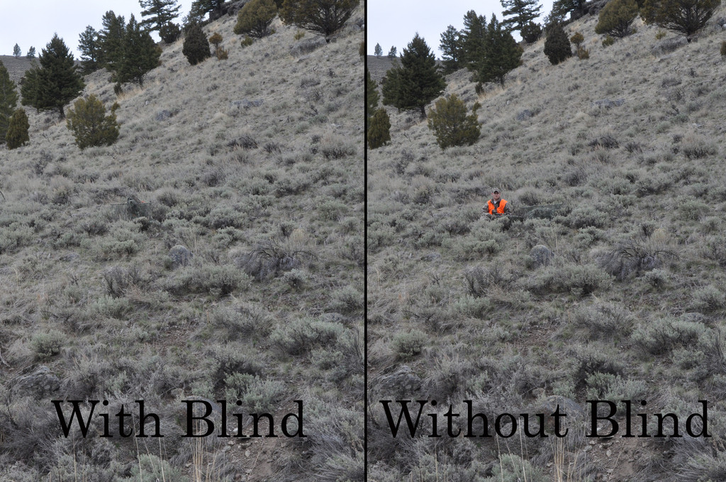 Even with hunters orange!