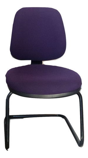 Zoo President Purple Chair (AA0-2A0-94A)