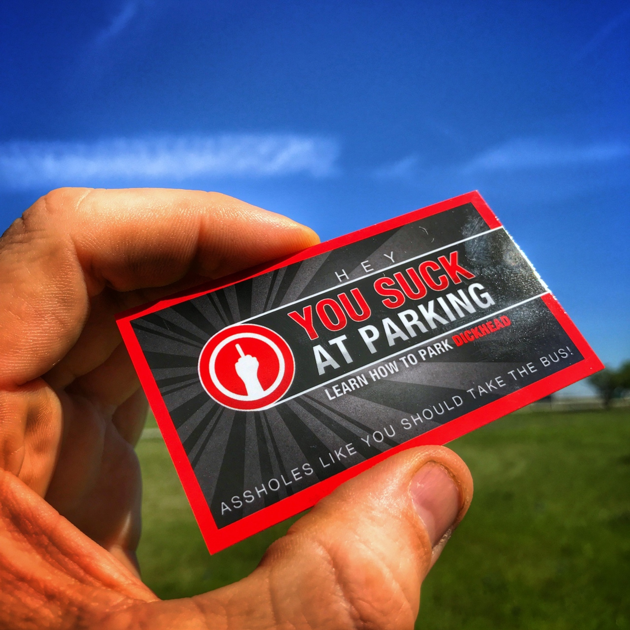YOU SUCK AT PARKING Business cards (10 pack) red