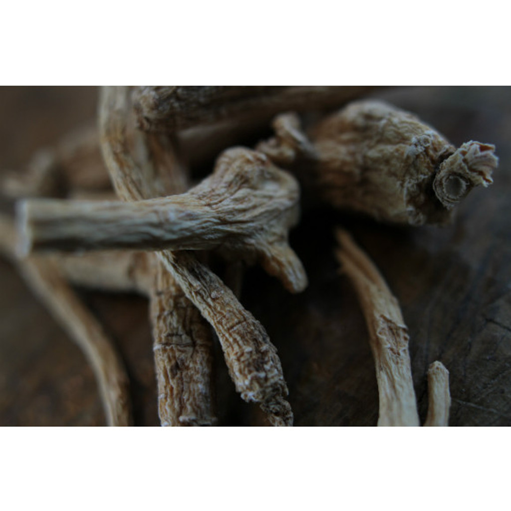 Red Ginseng Root