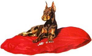 Pet Bed, Blue Jean with Dobe