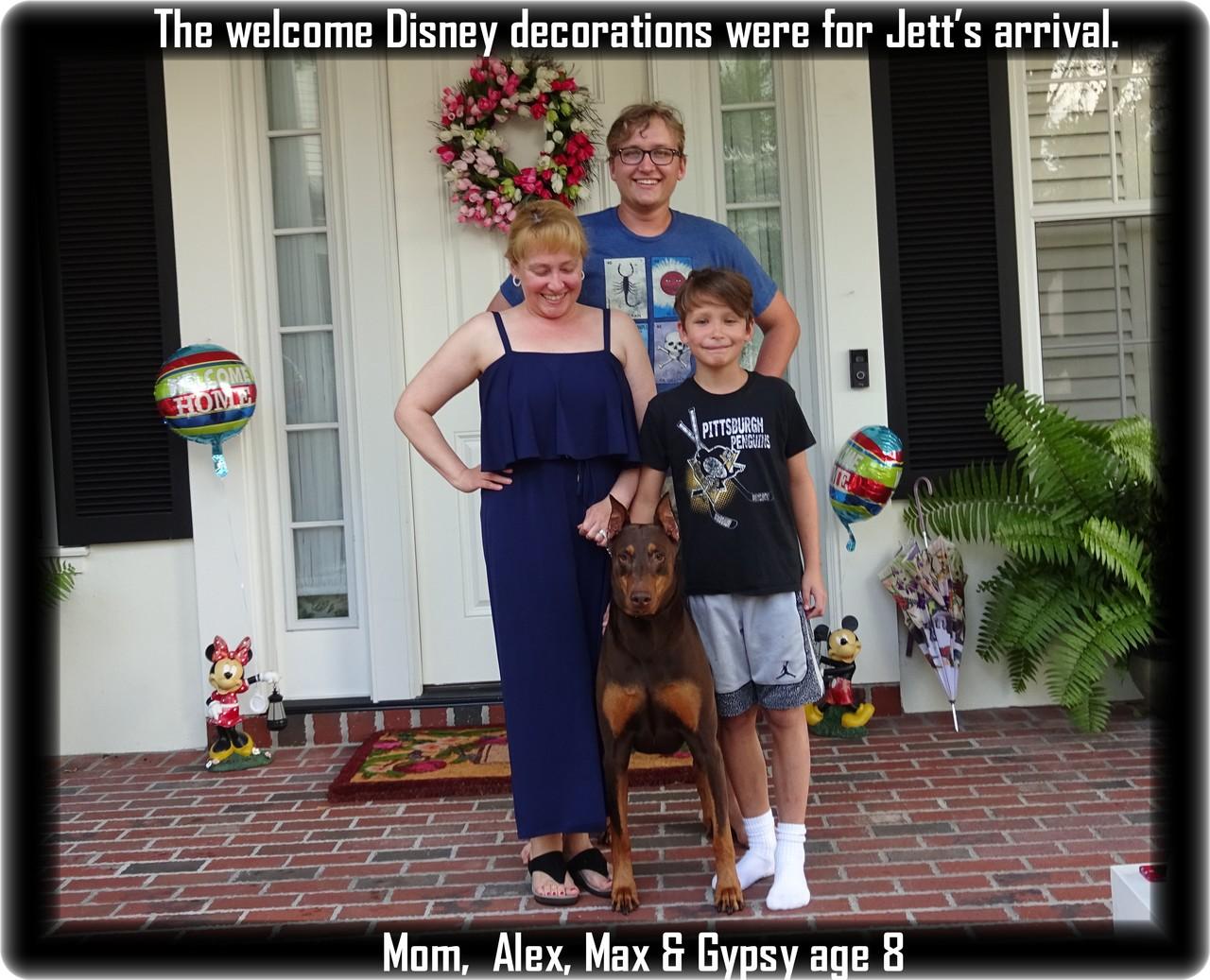 Jet / Celebration FL - Hoytt's Barron of Celebration /Grand Victor - Placed