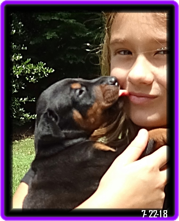 Lacey - Star baby /Reserved - New Jersey