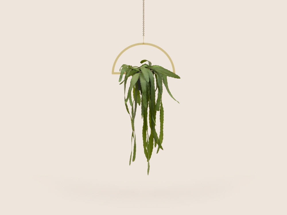 Small Good Things Semi-Circle Plant Mobile, Gold