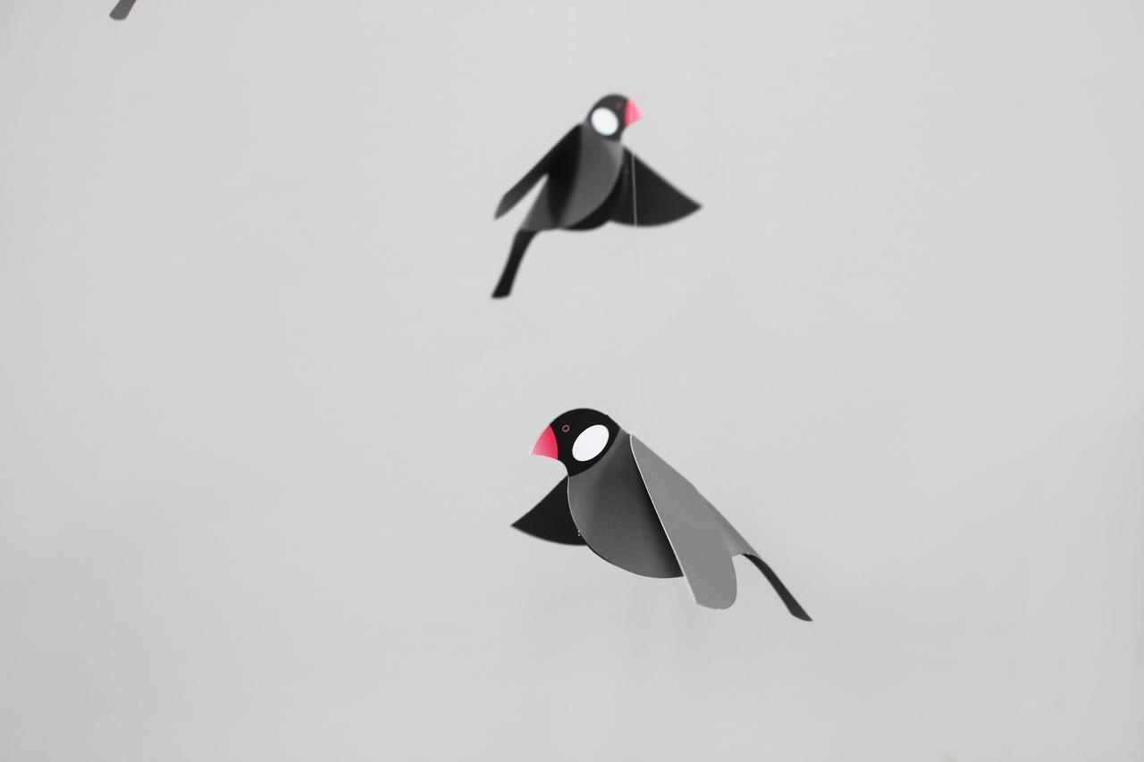 Joosepino Java Sparrow Mobile Black