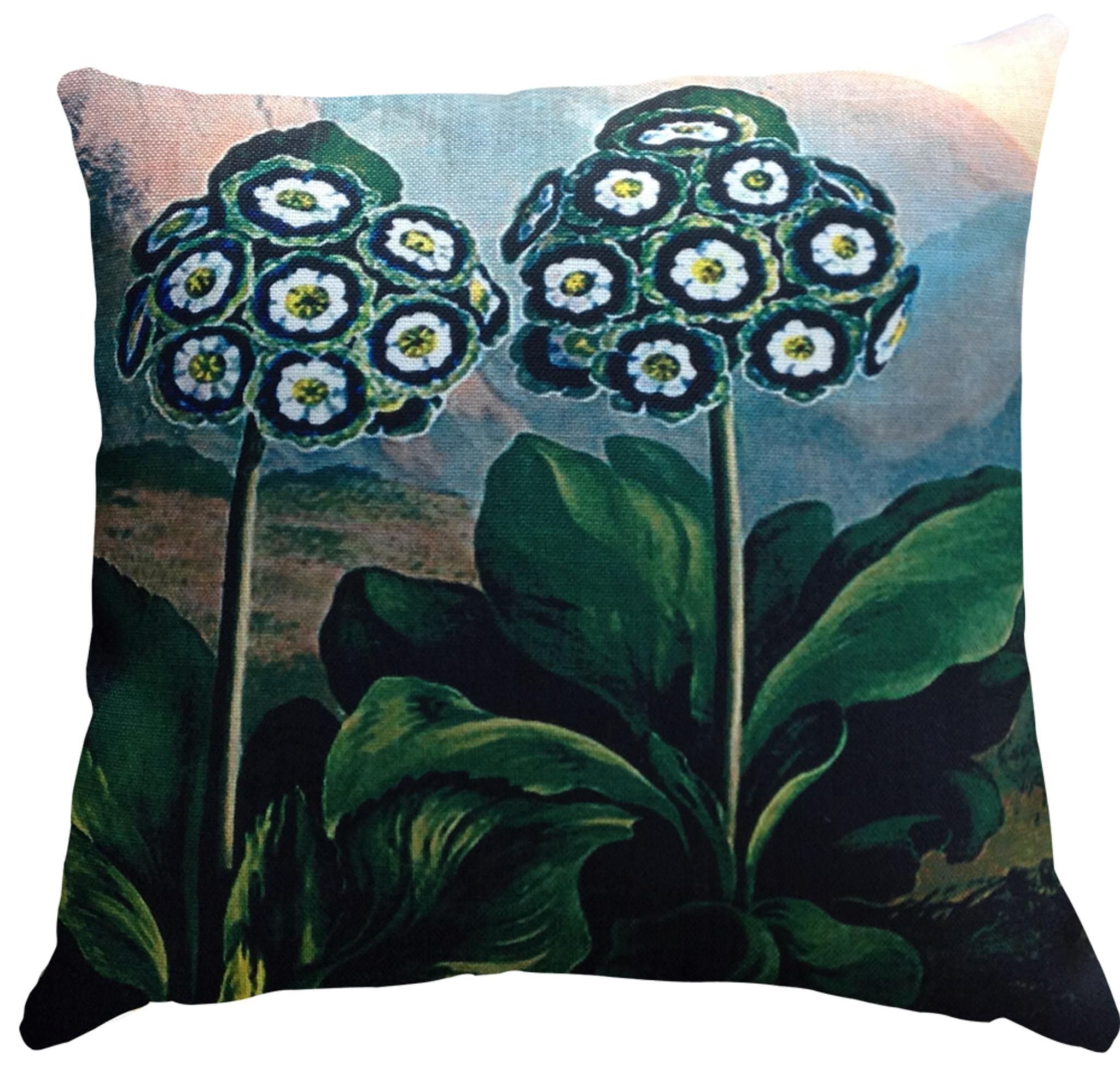 Cushion - Belles Fleurs Auriculas