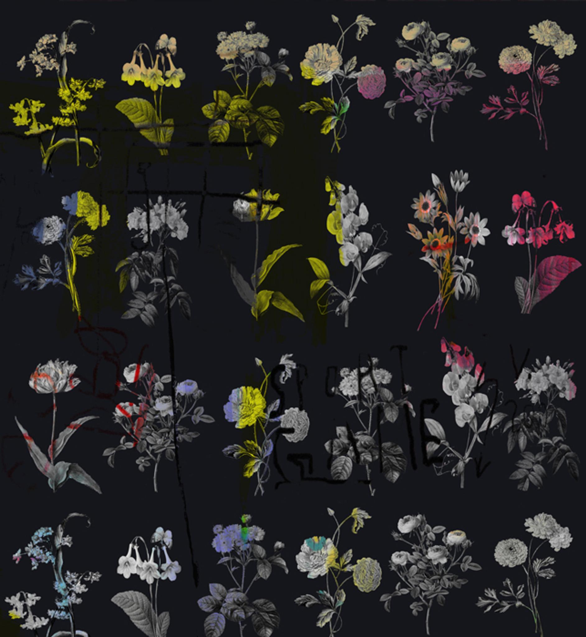 Fabric - Chiaroscuro - Black Magic