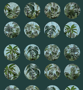 Fabric - Point of View - Tropical