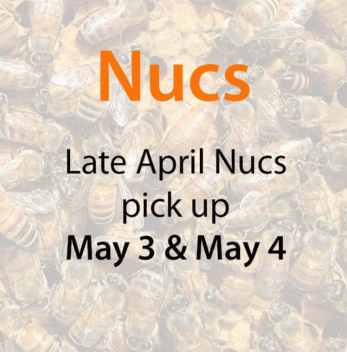 Late April Nucs