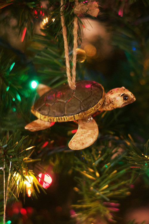 BA Sea Turtle Ornament