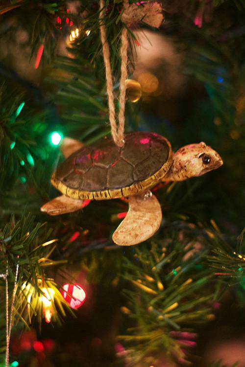 Brown Sea Turtle Ornament
