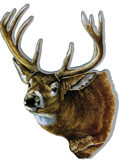 Rivers Edge Magnetic Art, Whitetail Deer