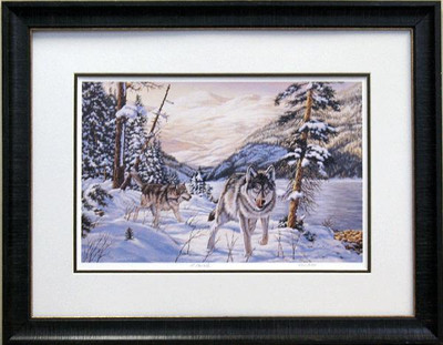 Snow Wolves Picture