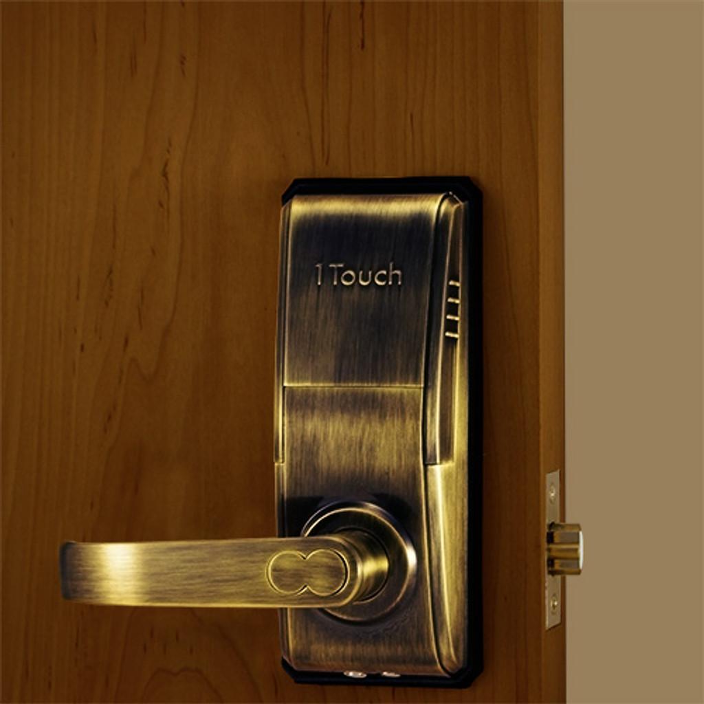 Antique Brass Front Lock Body