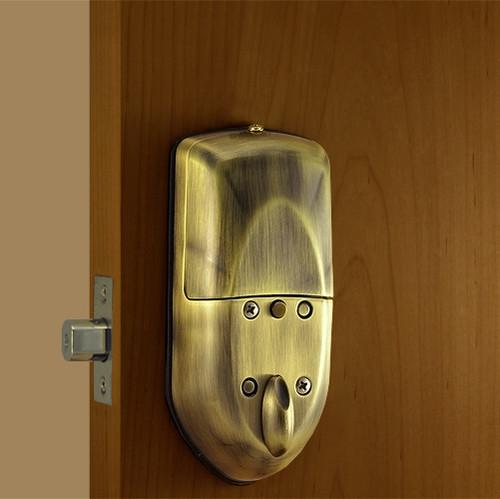 Antique Brass Back Lock Body