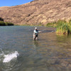 Deschutes River - Ladies Summer Steelhead Trip (Book it)