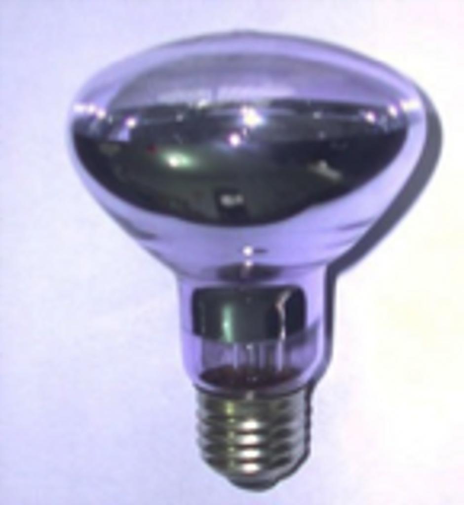 Basking Bulb 60watt