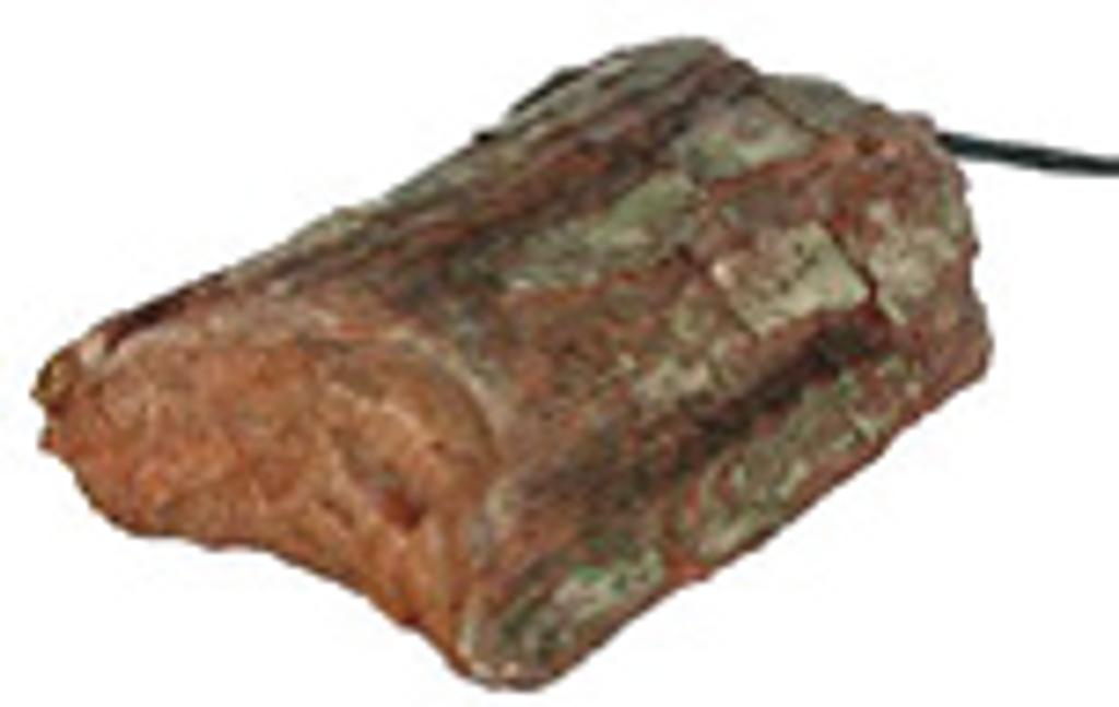 Tree stump heater