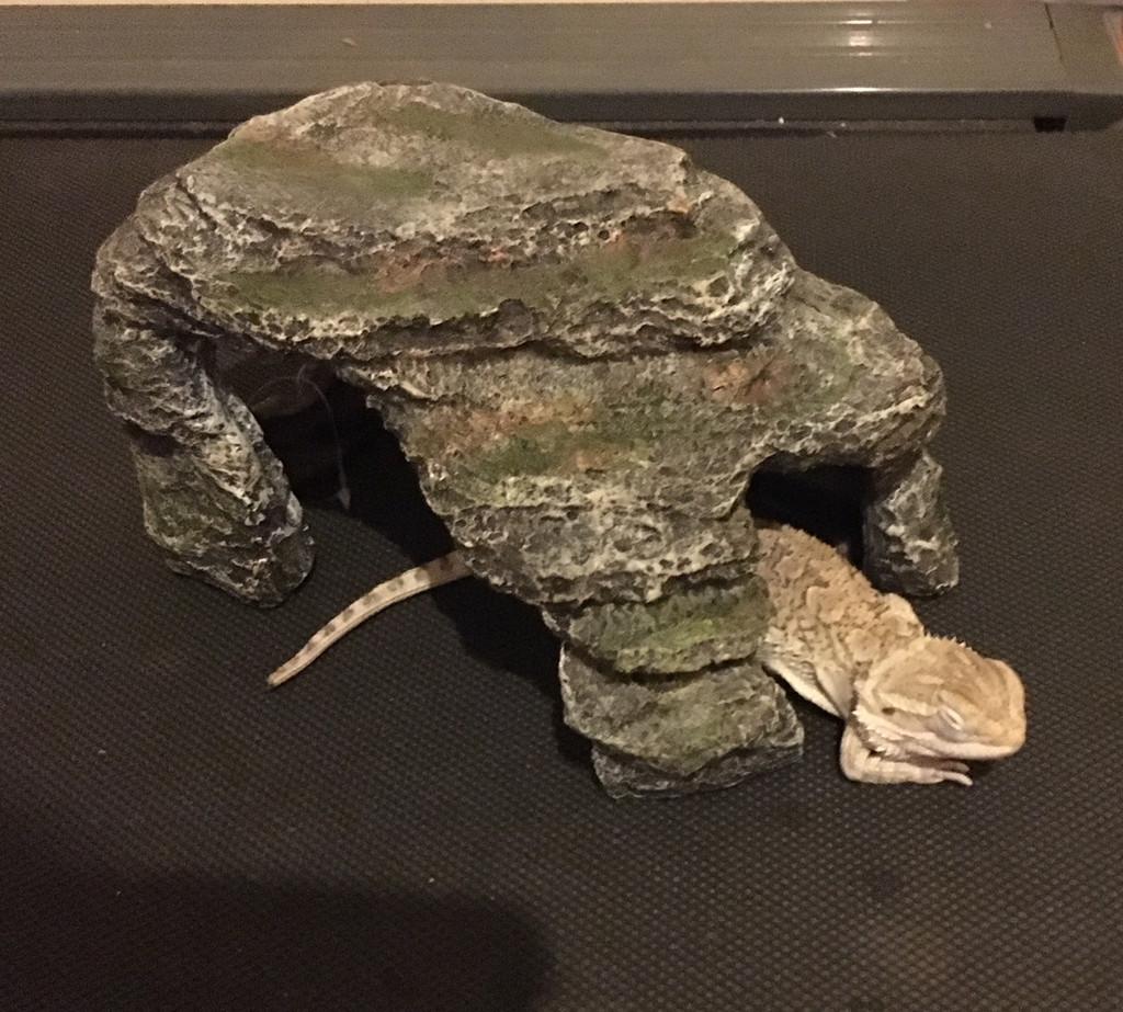 Rock Cave Hide