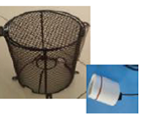 Mesh Light Cage with Light Fitting BWMC1220