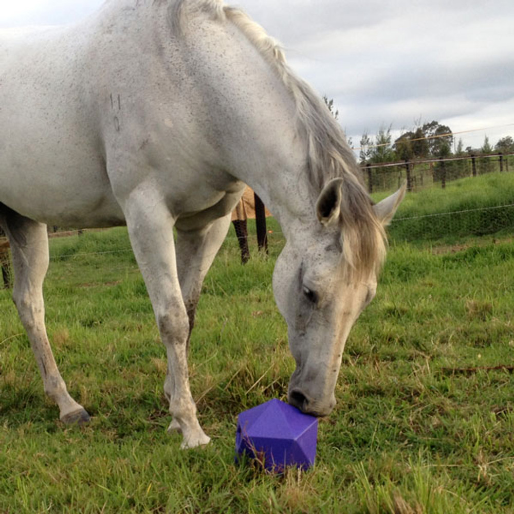 The Tubtrugs Dripfeed Ball stimulates natural grazing.