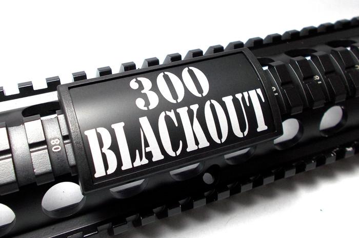 300 BLACKOUT