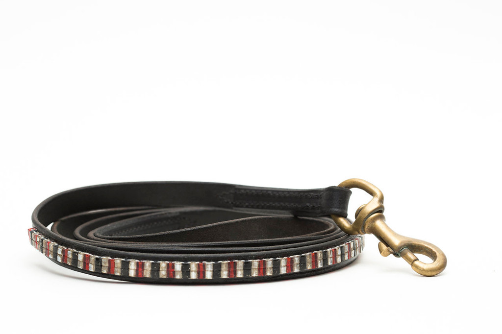 Fire and Ice Pet Leash