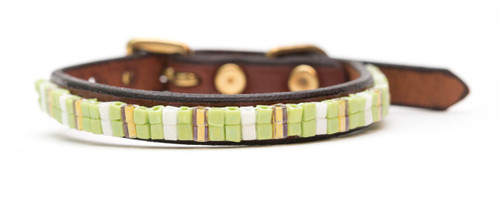 Lemon Lime Pet Collar