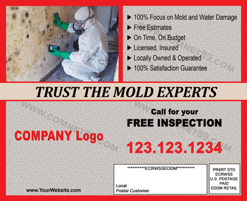 Mold Remediation EDDM Postcard 02