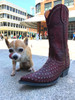 Men's Old Gringo Boots, Red Laguna Studs