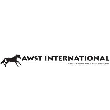 AWST International