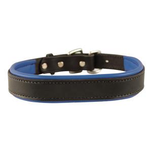 Perri's Custom Padded Dog Collar