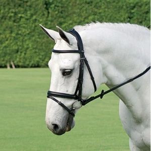 Passier AQUARIUS Padded Crown Dressage Snaffle Bridle With Reins