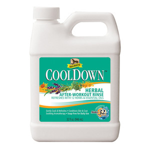Absorbine CoolDown Herbal After-Workout Rinse