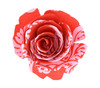 Paper Rose Topper - Pineapple Pink/Red