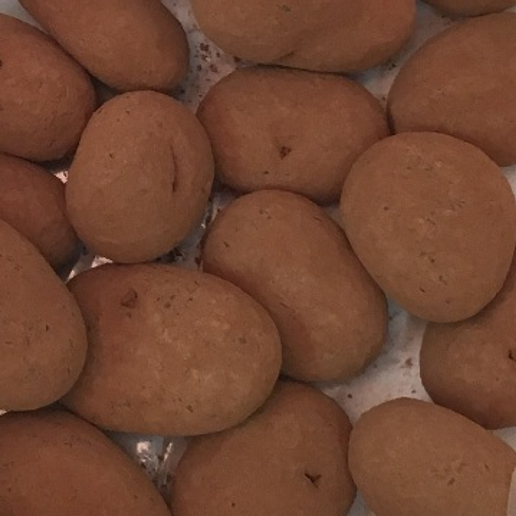 chocolate pecans cinnamon dusted