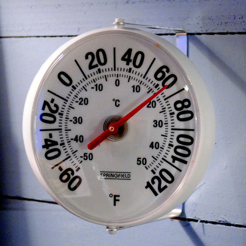 Swivel Thermometer