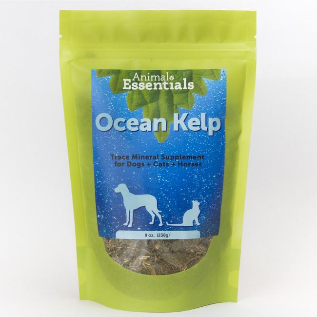 Organic Ocean Kelp 8 oz